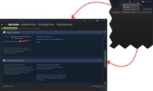 Окна программы Steam