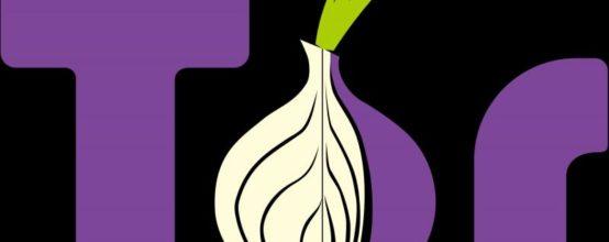 Логотип Тор