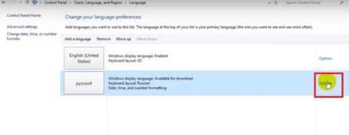 Вкладка параметров языка и кнопка «Options»