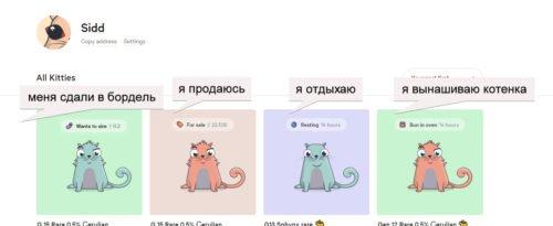 Меню «Все коты»