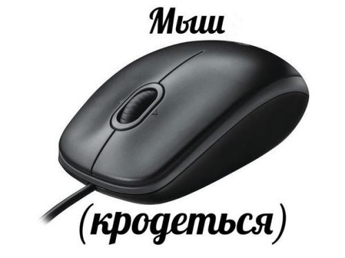 Мем «мыш кродеться»