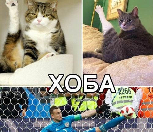 Мем про ногу Акинфеева