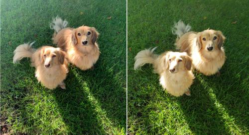 сравнение снимков samsung galaxy s9 и iphone xs