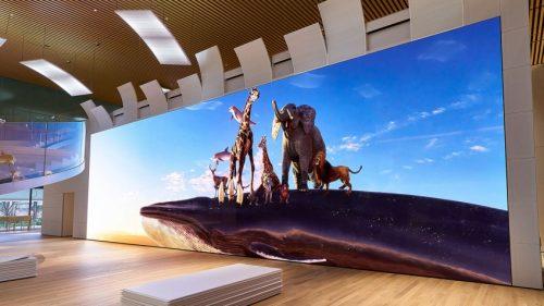 Sony установила в Японии экран с разрешением 16K