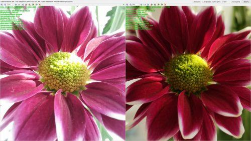 Макросъемка и обычная съемка на камеры